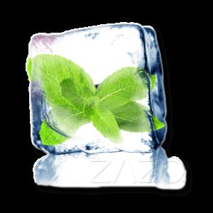 ZAZO Cool Mint