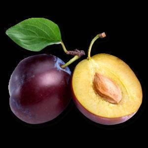 Inawera tobacco plum