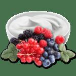 Liquid Rezept Waldfrüchtejoghurt