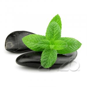 Zazo Menthol Liquid für E-Zigaretten Dampfmatiker